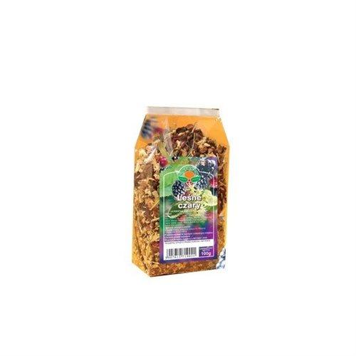 Herbata Leśne Czary 100g